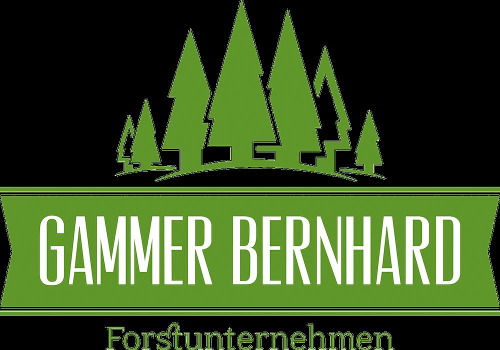 Forstunternehmen Gammer Eferding | Ihr kompetenter Partner aus Eferding bei Holzernte, Vermarktung, Pflanzungen und Pflege. Aufforstung, Durchforstung, Rückearbeiten, Seilkranbringung, Biomasse Verkauf Beratung Erzeugung, Forstarbeiten